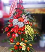 Hoa mừng khai trương đẹp
