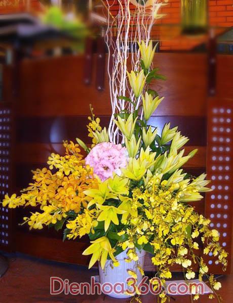 Hoa sinh nhật, những mẫu hoa đẹp, điên hoa Yên Bái