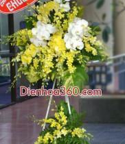 Điện hoa chúc mừng, đặt hoa khai trương, lãng hoa chúc mừng, mẫu hoa khai trương đẹp, hoa khai truong