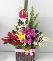 Mua hoa tươi, shop hoa online, gửi điện hoa