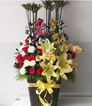 Hoa sinh nhật đẹp, mẫu hoa đẹp, hoa địa lan