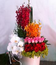 Quà tặng sinh nhật, dịch vụ điện hoa, hoa tươi