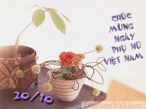 hinh-anh-chuc-mung-20-10