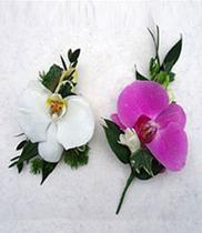 Mẫu hoa cài áo đẹp, đặt hoa cài áo đẹp