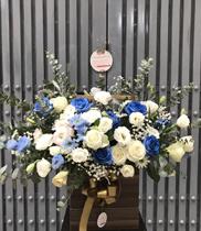 Hoa chúc mừng màu xanh