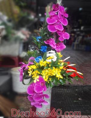hoa, hoa khai truong, binh hoa chuc mung