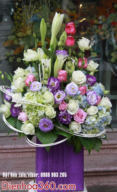 Hoa lan tường-hoa loa kèn-hoa tặng sinh nhật