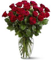 Hoa sinh nhật tặng vợ