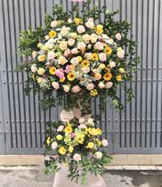 Lãng hoa giá rẻ