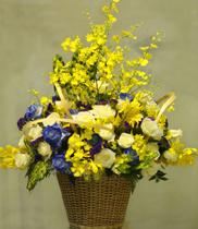 Dịch vụ điện hoa uy tín-mẫu hoa chúc mừng khai trương