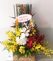 Hình ảnh hoa sinh nhật, mẫu hoa sinh nhật đẹp, hoa tuoi, hoa rẻ