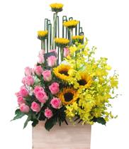 Điện hoa sinh nhật-hoa tươi giá rẻ