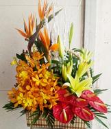 Hoa tươi giá rẻ, shop hoa tươi, mẫu hoa đẹp