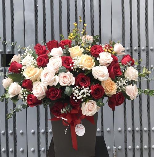 hoa hồng tặng ngày 20 tháng 10