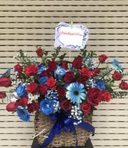Giỏ hoa chúc mừng màu xanh Dienhoa360.com