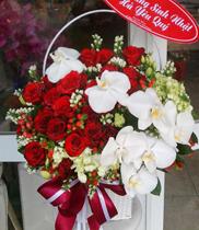 Mẫu hoa tươi đẹp – hoa hồng
