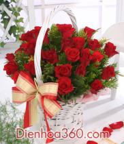 Gửi điện hoa pleiku Gia Lai, giao hoa miễn phí tại TP Pleiku, cửa hàng hoa tại Pleiku