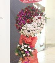 Hoa khai trương tặng hoa gì