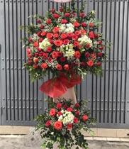 Lãng hoa chúc mừng hoa hồng