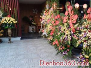 lang hoa khai truong quan an ohashiya (9)