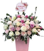 Lãng Hoa sinh nhật đẹp nhất