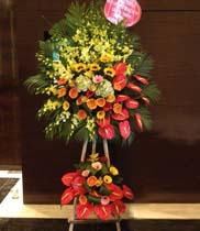 Lãng hoa tươi đẹp