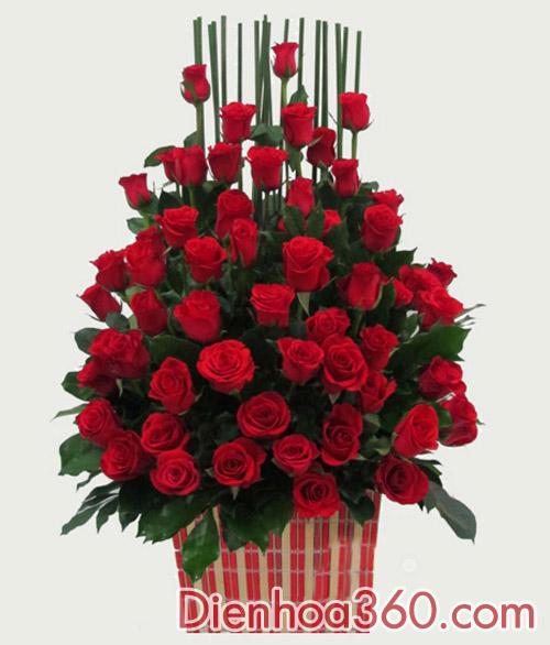 rose, flower, shop hoa online