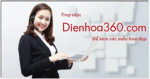 shop hoa 360