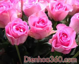 Bình hoa tươi 002