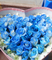 Hộp hoa hồng tim-hộp hoa