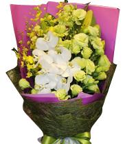 mua hoa sinh nhật giá rẻ, mua hoa sinh nhat gia re, tiệm bán hoa sinh nhật, tiem ban hoa sinh nhat, đặt điện hoa sinh nhật