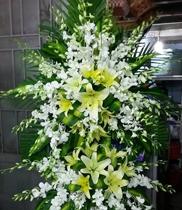 Đặt hoa khai trương tại Hà Nội, dịch vụ hoa khai trương tại Hà Nội, điện hoa chúc mừng
