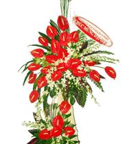 Đặt hoa khai trương giá rẻ, mẫu hoa giá rẻ, điện hoa chúc mừng