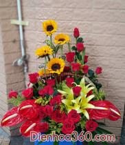 Ý nghĩa ngày 20/11, quà tặng thầy cô ngày 20/11, điện hoa mừng ngày nhà giáo Việt Nam