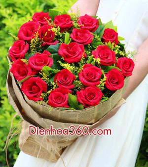 hoa hong do, rose