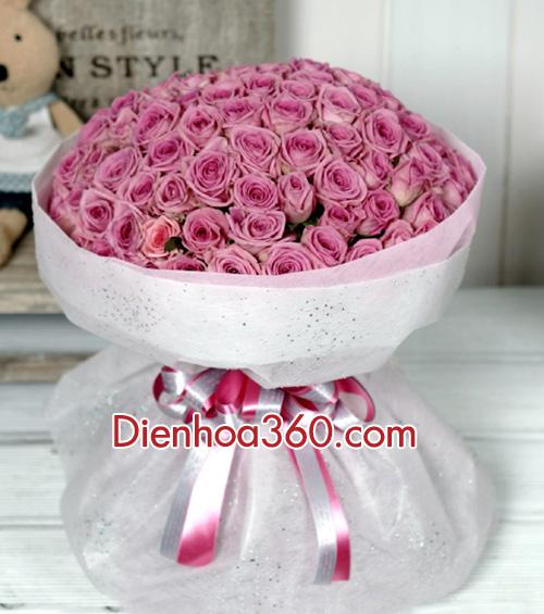 hoa hong tim, hoa dep_2