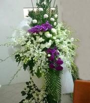 Đặt hoa chúc mừng, gửi hoa khai trương, địa chỉ đặt hoa khai trương rẻ đẹp