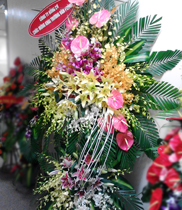 Mau hoa khai truong re, dienhoagiare_hn, hoa khai trương, flower