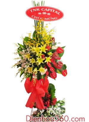 shop hoa online, lang hoa chuc mung, hoa khai truong