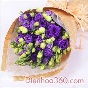 fa14217f4f Bó hoa lan tường tím - Hoa chúc mừng