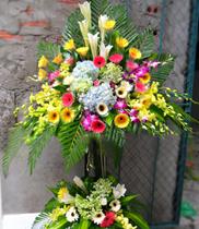 Đặt hoa khai trương, lãng hoa khai trương, hoa chúc mừng, điện hoa Hà Nội