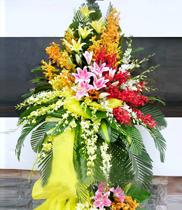 điện hoa, hoa khai trương, hoa chúc mừng, dịch vụ hoa tươi