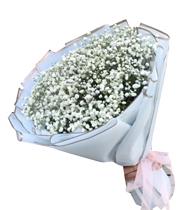 Bó hoa baby tặng sinh nhật