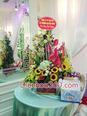cua hang hoa, shop hoa tuoi, mau hoa chuc mung, dien hoa, hoa khai truong gia re (8)