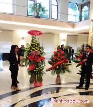 Hoa chúc mừng, điện hoa lễ khai trương giao dịch cổ phiếu C.Ty CP đại lý hàng hải Việt Nam