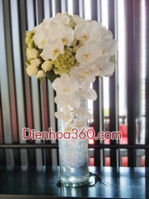 Binh hoa sang trong, qua tang sinh nhat y nghia