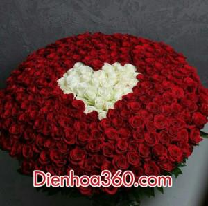 Qua tang valentine dep, mau qua tang valentine, hoa tuoi valentine (6)