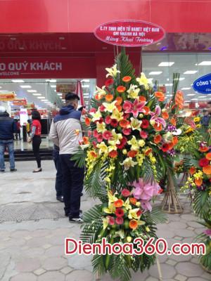 lang hoa khai truong, hoa chuc mung gia re (6)