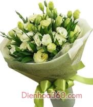 Hoa Cát tường ý nghĩa và nguồn gốc hoa tươi cát tường