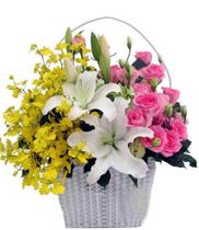 Hoa Tặng vợ ngày quốc tế phụ nữ 08/03, điện hoa Tặng Vợ, Mẫu hoa 08/03 đẹp tặng vợ, hoa 0803